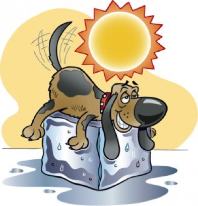 Dog Days Of August Meaning